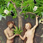 ароматы с нотами марихуаны