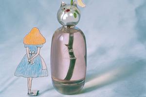 Comme des Garcons выпускает аромат совместно с Грейс Коддингтон