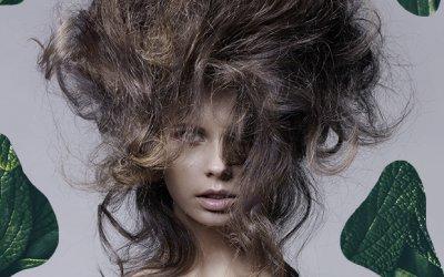 Львиная грива: как встретить весну со здоровыми волосами