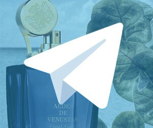 7 Telegram-каналов о парфюмерии