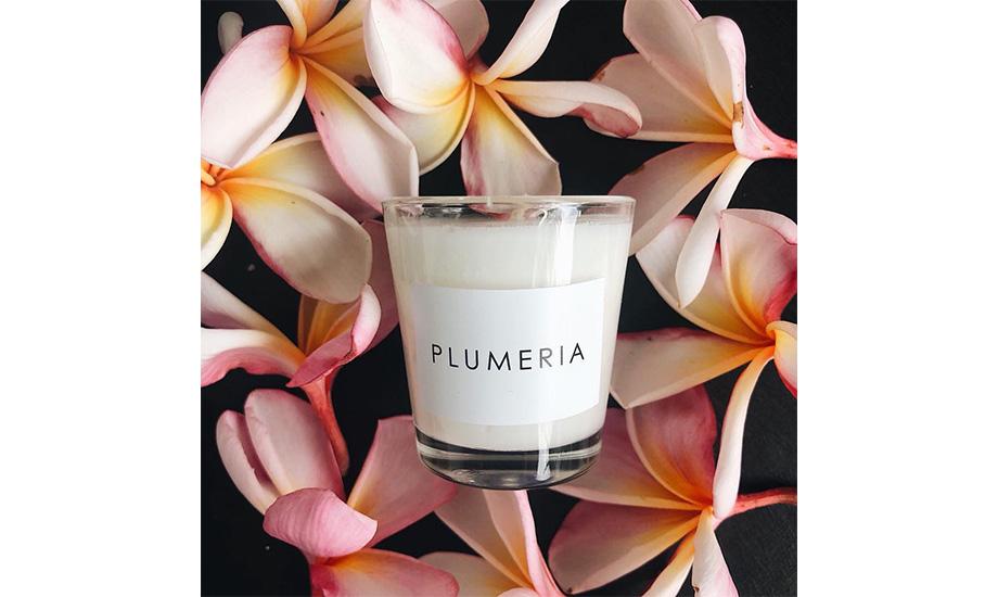 Arka, Candle Plumeria