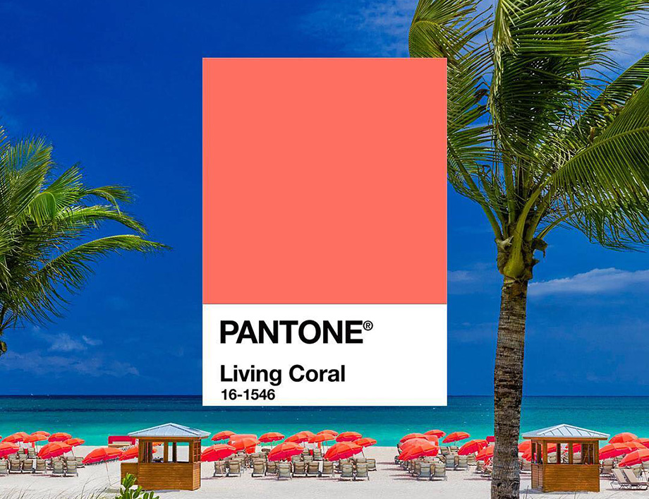 Pantone цвет 2019 года