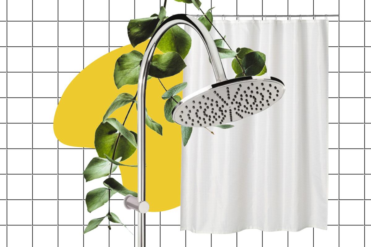 эвкалиптовый душ