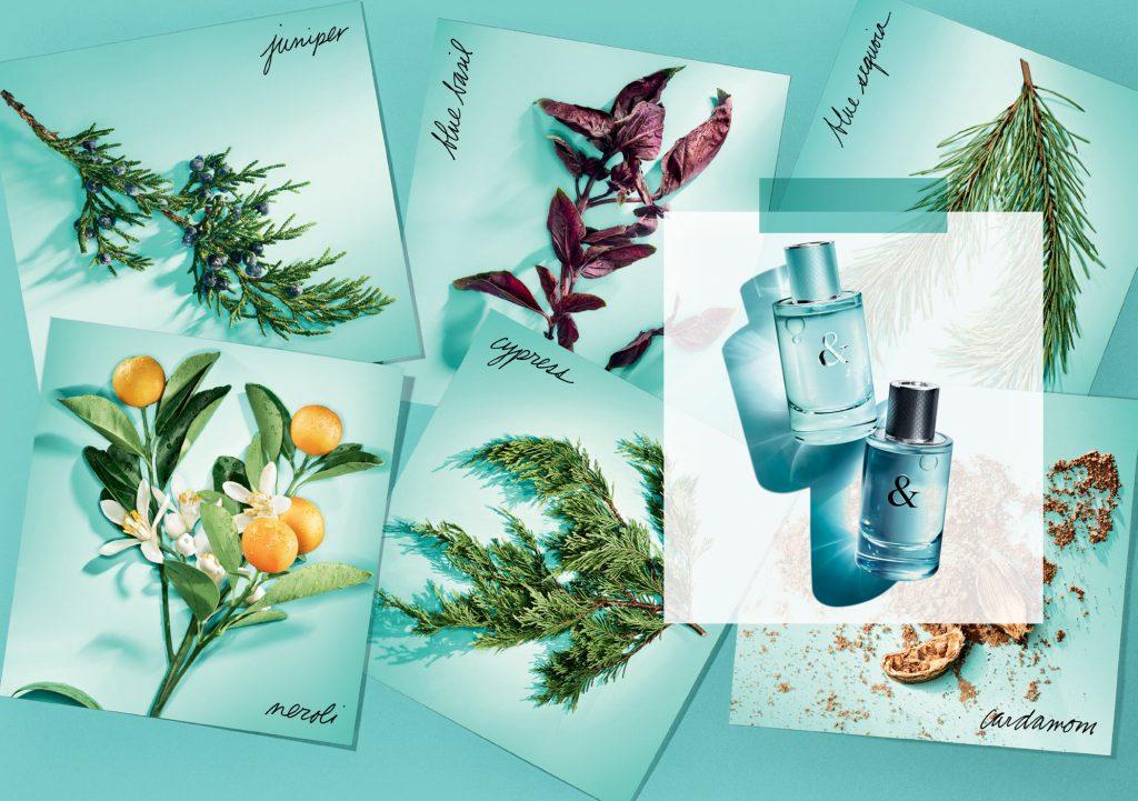 Tiffany & Love — новая коллекция ароматов ювелирного дома