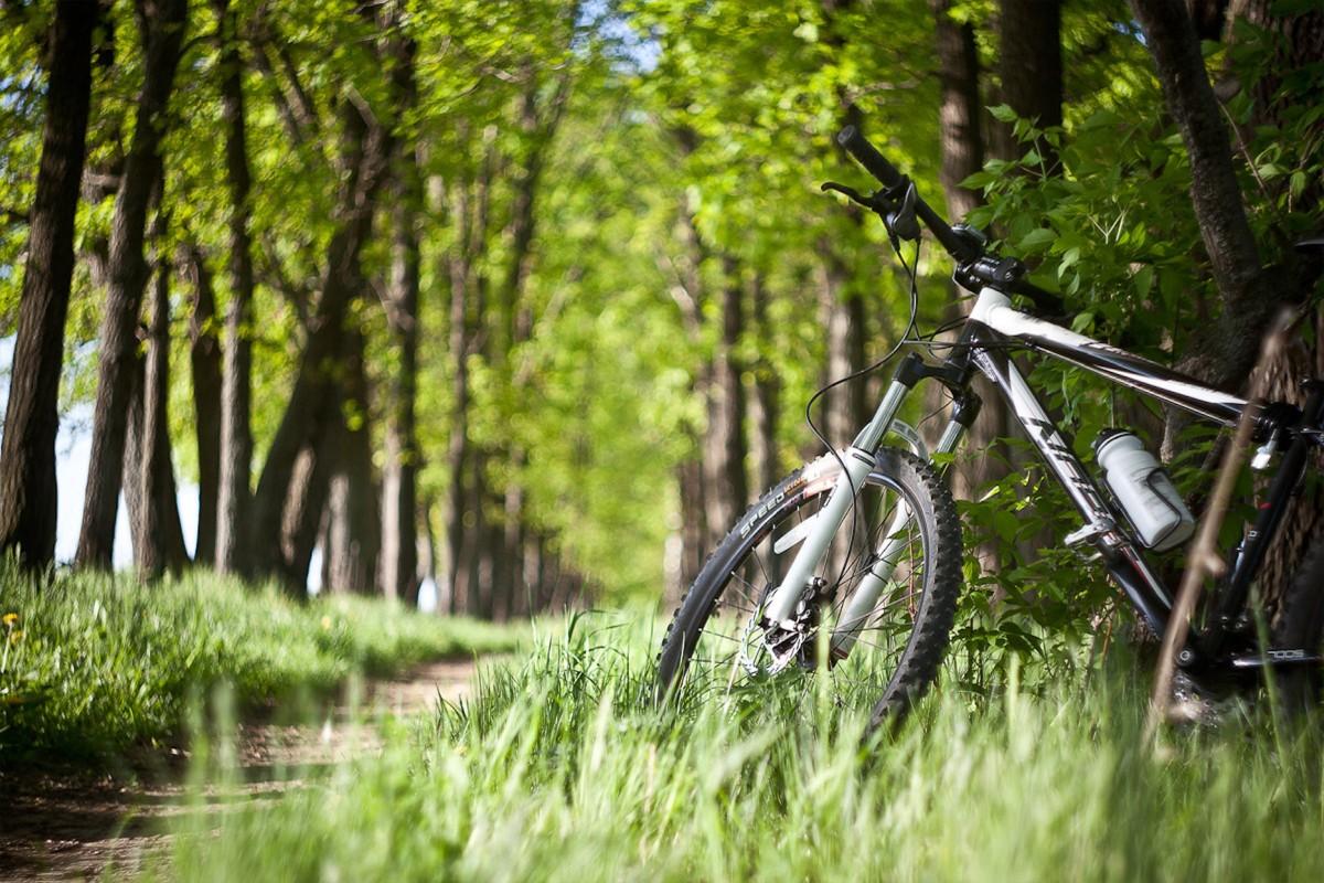 Топ-10 кращих велосипедних маршрутів Україною
