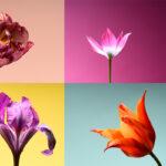 Бюджетный парфюм: топ-10 женских ароматов на весну-лето