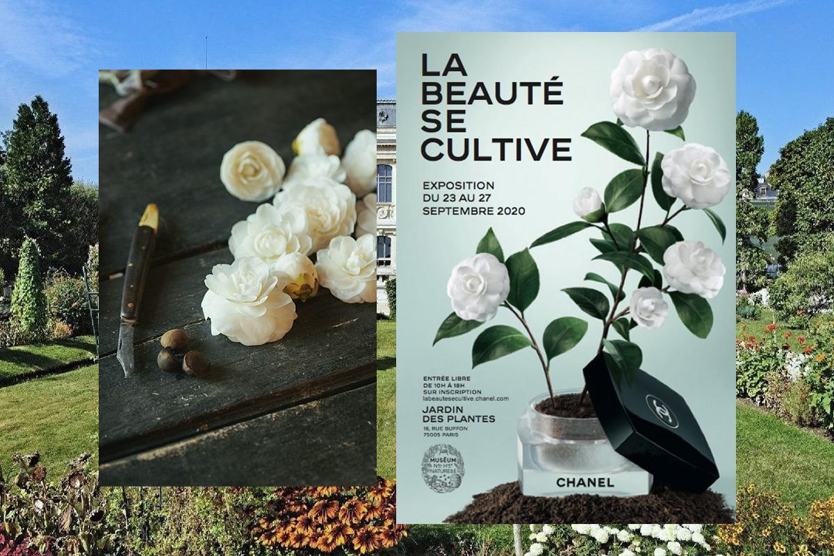 Chanel Beauty воссоздаст райские сады в центре Парижа