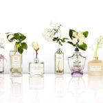Тест: какой нишевый парфюм тебе подойдет?