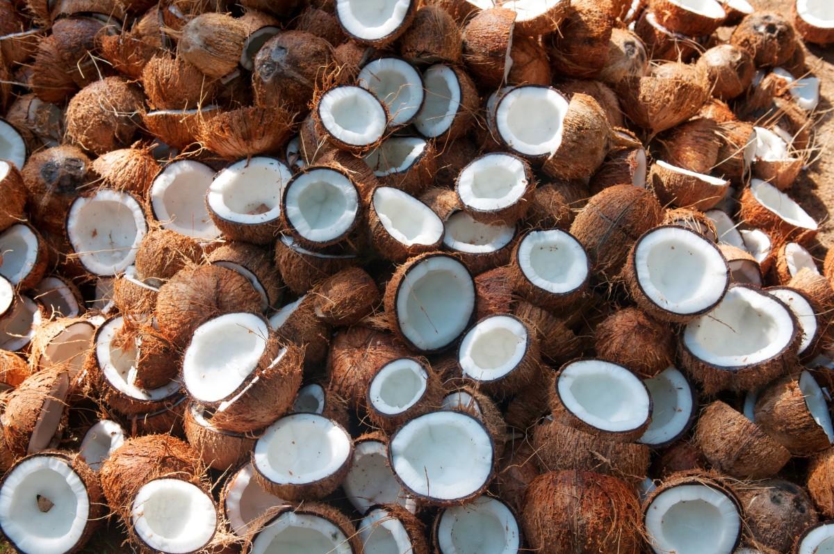 тропический кокос