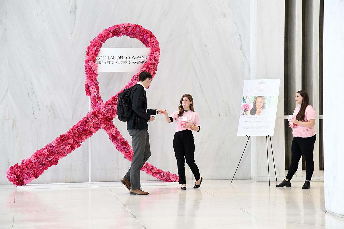 Кампания Estée Lauder Companies по борьбе с раком груди 2020
