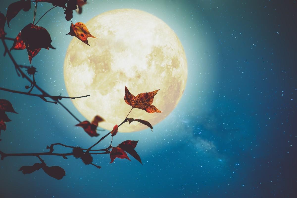 Новий місяць і Повний місяць в грудні 2020: коли чекати і що планувати