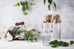 Березовий сік: корисні властивості, як пити, кому протипоказаний