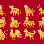 Рік якої тварини за східним календарем буде у 2022-у